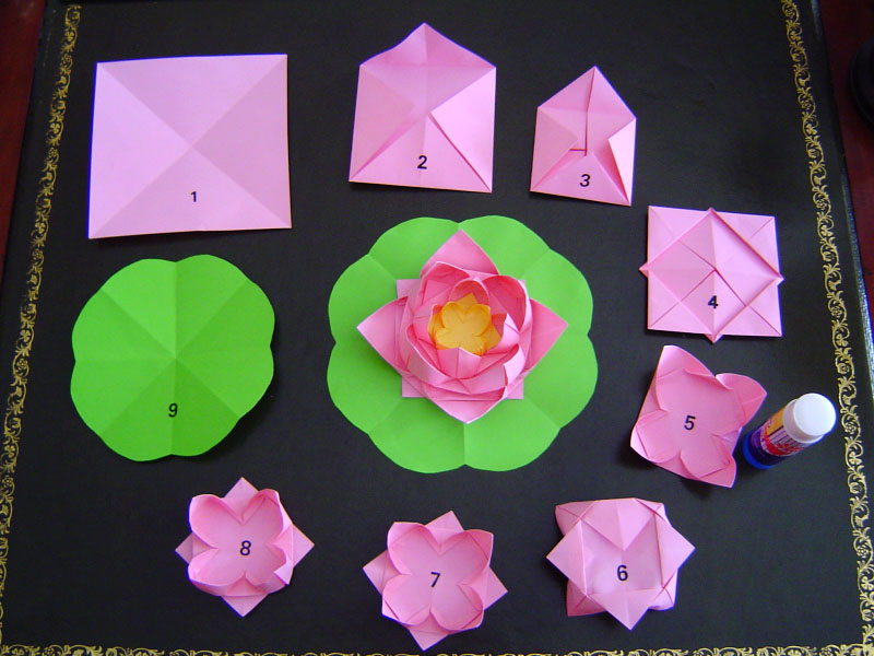 Lotus Flower Napkin Fold Step By Step : Steps to fold an origami lotus flower